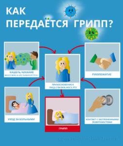 Сколько живут вирусы во внешней среде