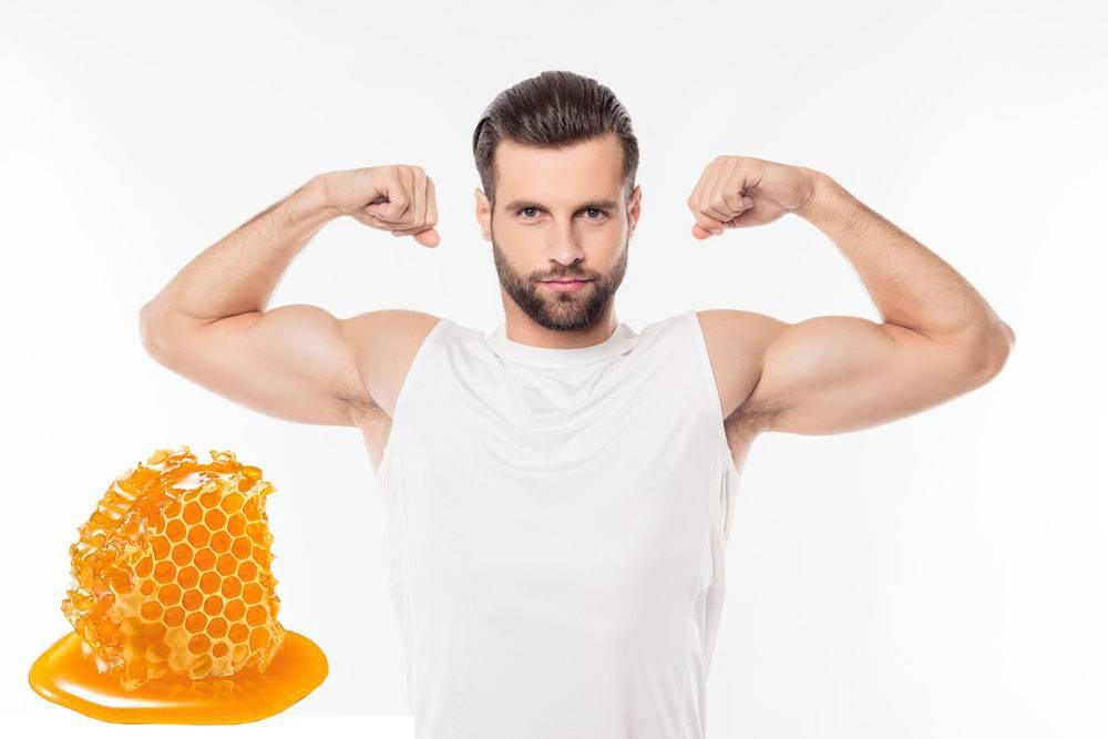 Польза применения меда для сохранения потенции