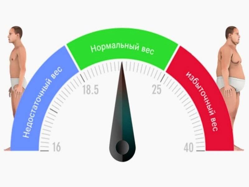 Калькулятор индекса массы тела (имт)