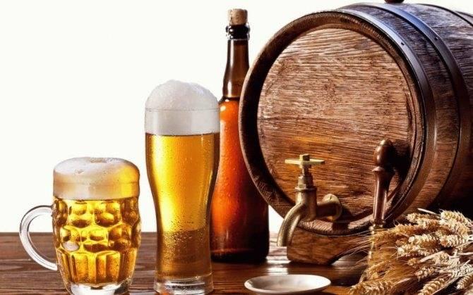 Вред пива для мужчин: влияние напитка на организм
