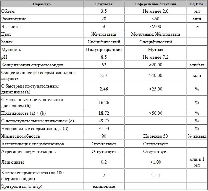 Спермограмма как метод диагностики мужского бесплодия
