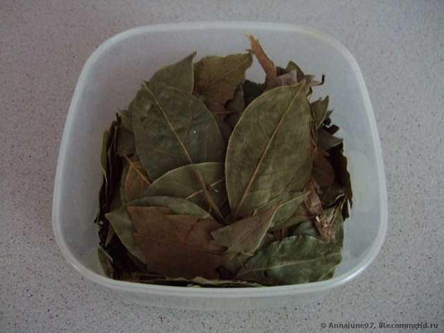Лосьоны и отвары от прыщей на основе лаврового листа