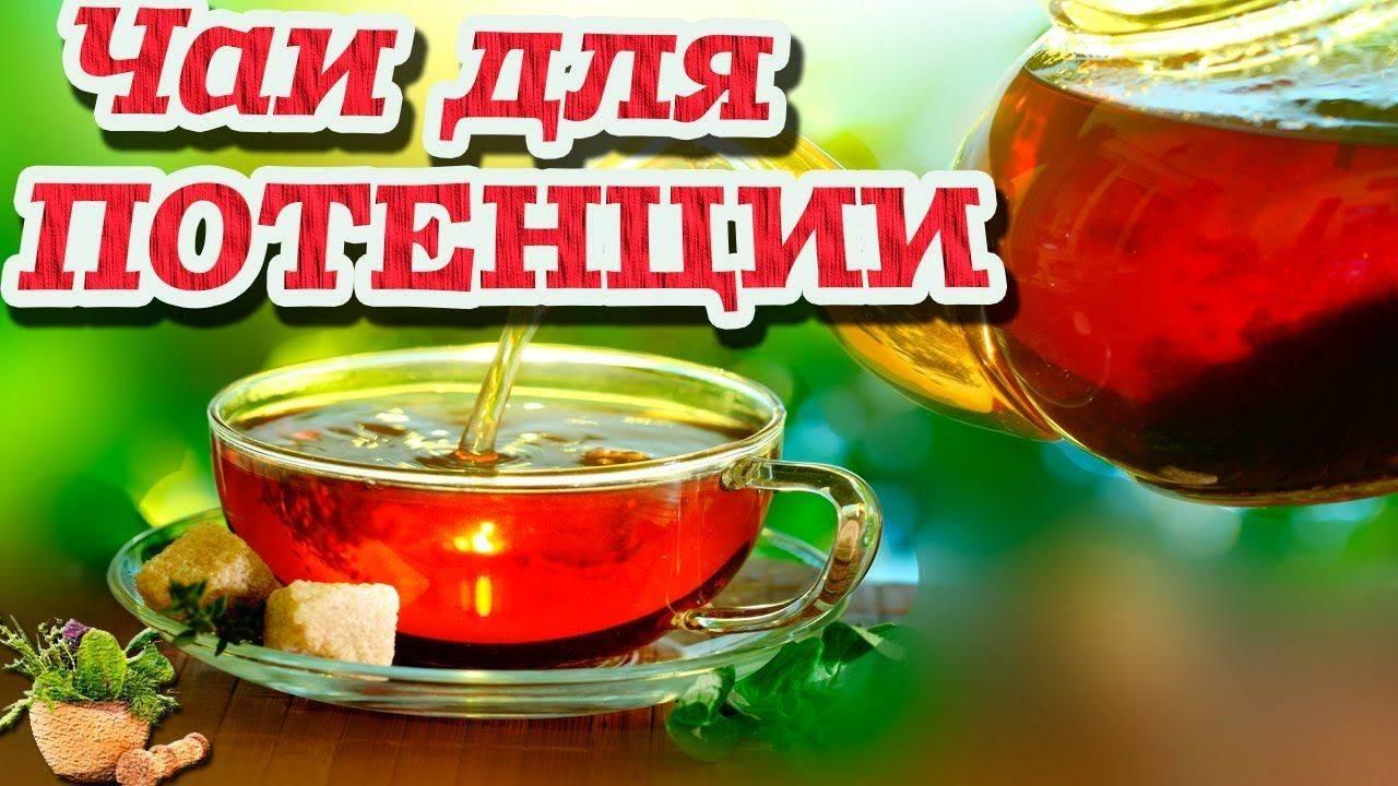 Травы и чаи для потенции: 9 самых вредных и 33 самых полезных напитка