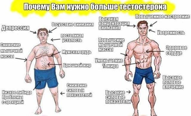 Общий тестостерон