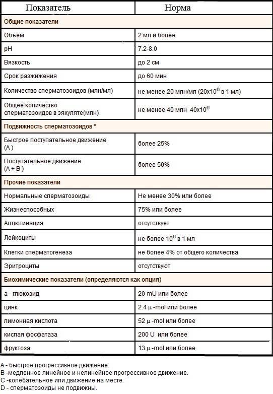 Что такое морфология спермограммы, какие нормы существуют и как улучшить показатели?