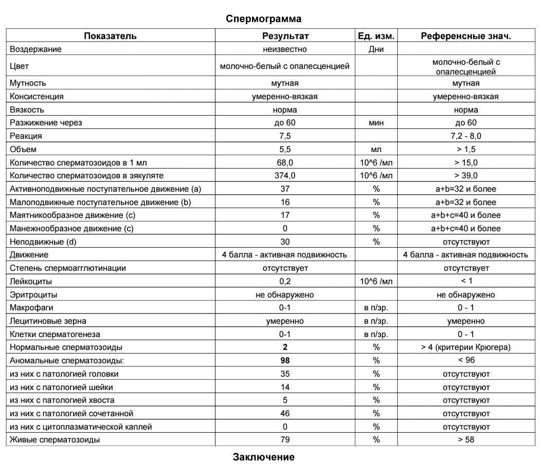Нормозооспермия: что означает этот термин?