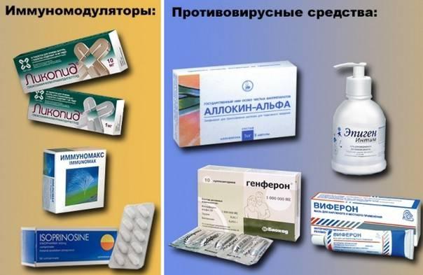 Как повысить иммунитет при впч: обзор действенных иммуностимуляторных препаратов