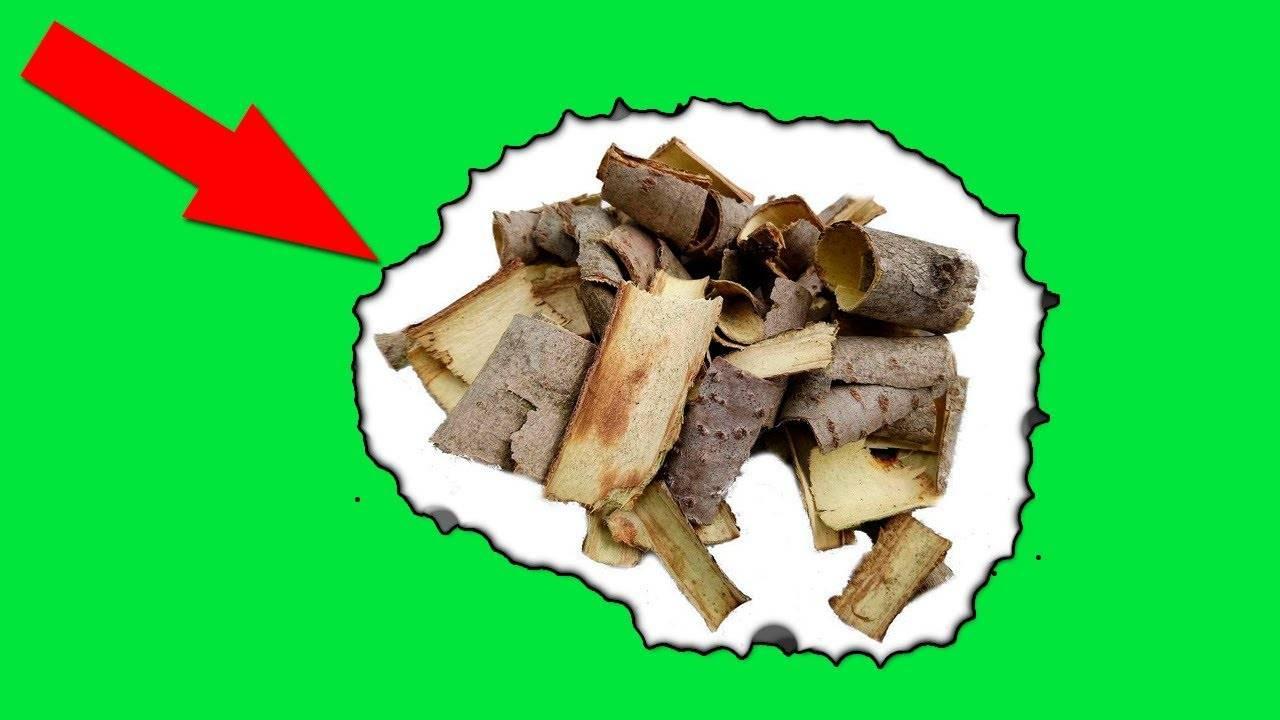 Рецепты с корой осины для лечения простатита