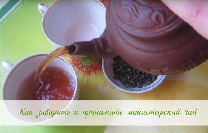 Что входит в состав монастырского чая и как правильно его пить