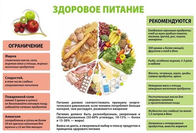 Сбалансированное питание – примерное меню на неделю для всей семьи на каждый день