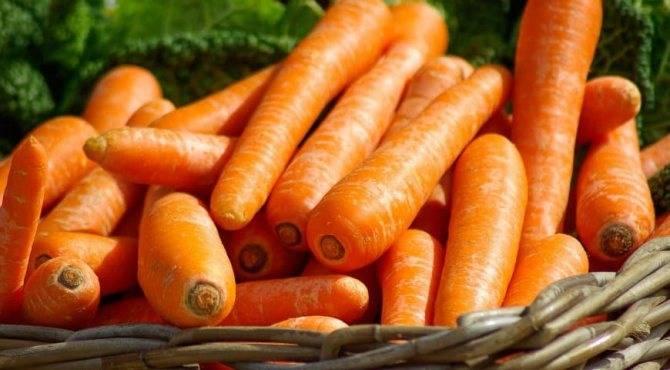Морковные маски для лица от угрей и прыщей