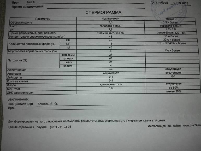 Морфология сперматозоидов и эякулята. критерии оценки, анализ