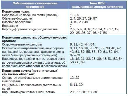 Самые безобидные штаммы впч 6 и впч 11: диагностика и лечение