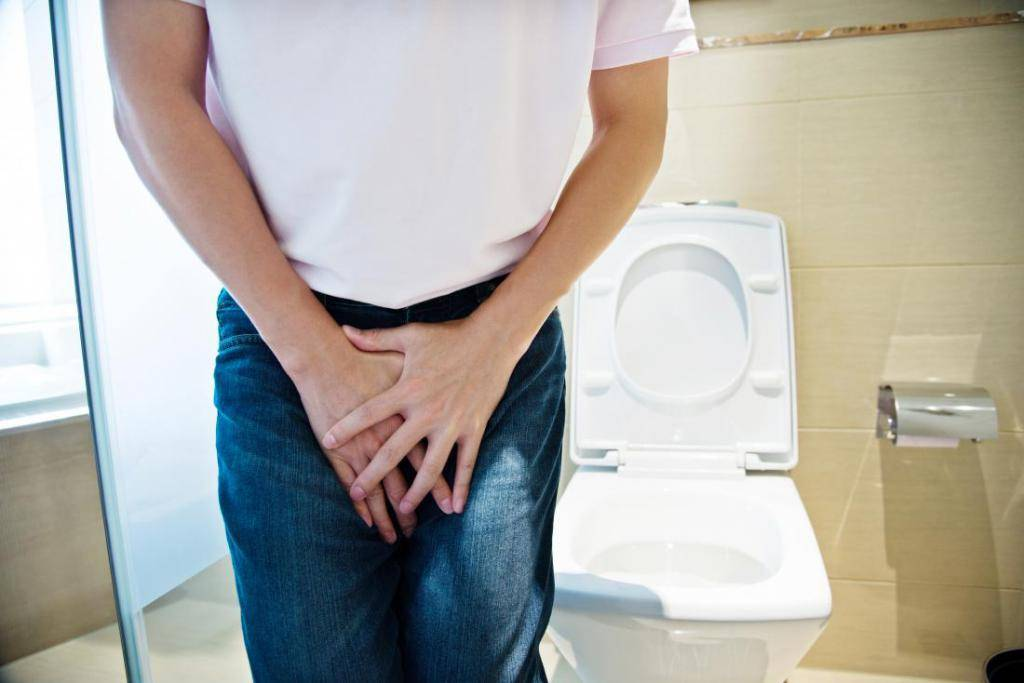 Где в норме находится простата у мужчин?