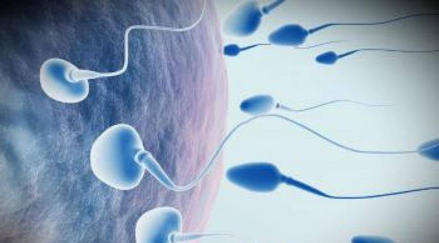 Варикоцеле не влияет на бесплодие доказано