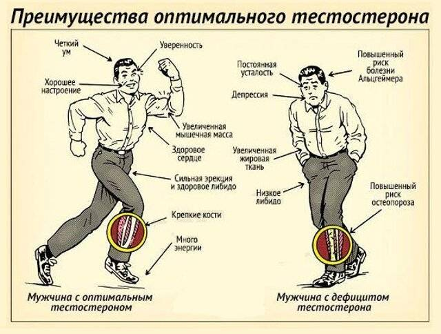 Как влияет бег на потенцию у мужчин?