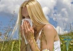 аллергия на амброзию паразиты в организме