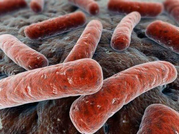 Ротовую полостьмогут заселить возбудителизаболеваний, передающихся половым путем (ЗППП)