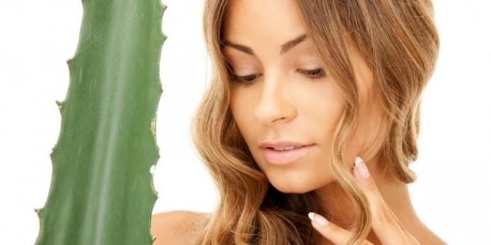 Рецепты масок из алоэ для кожи разных типов и для волос