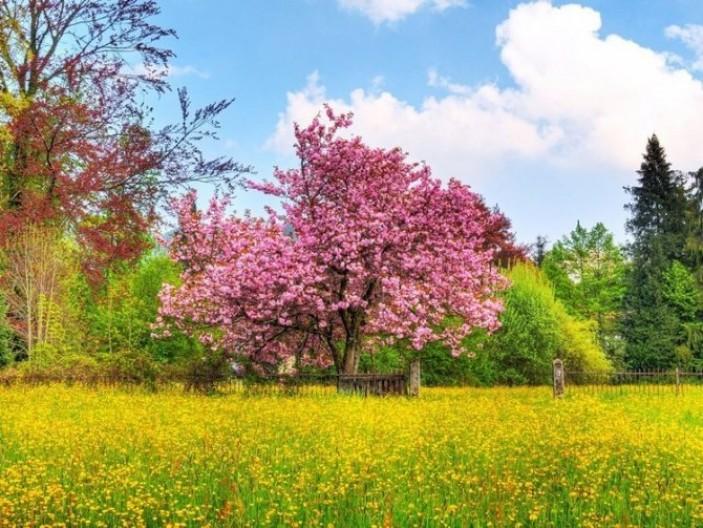 Сочинение на тему Весна в публицистическом стиле для школы