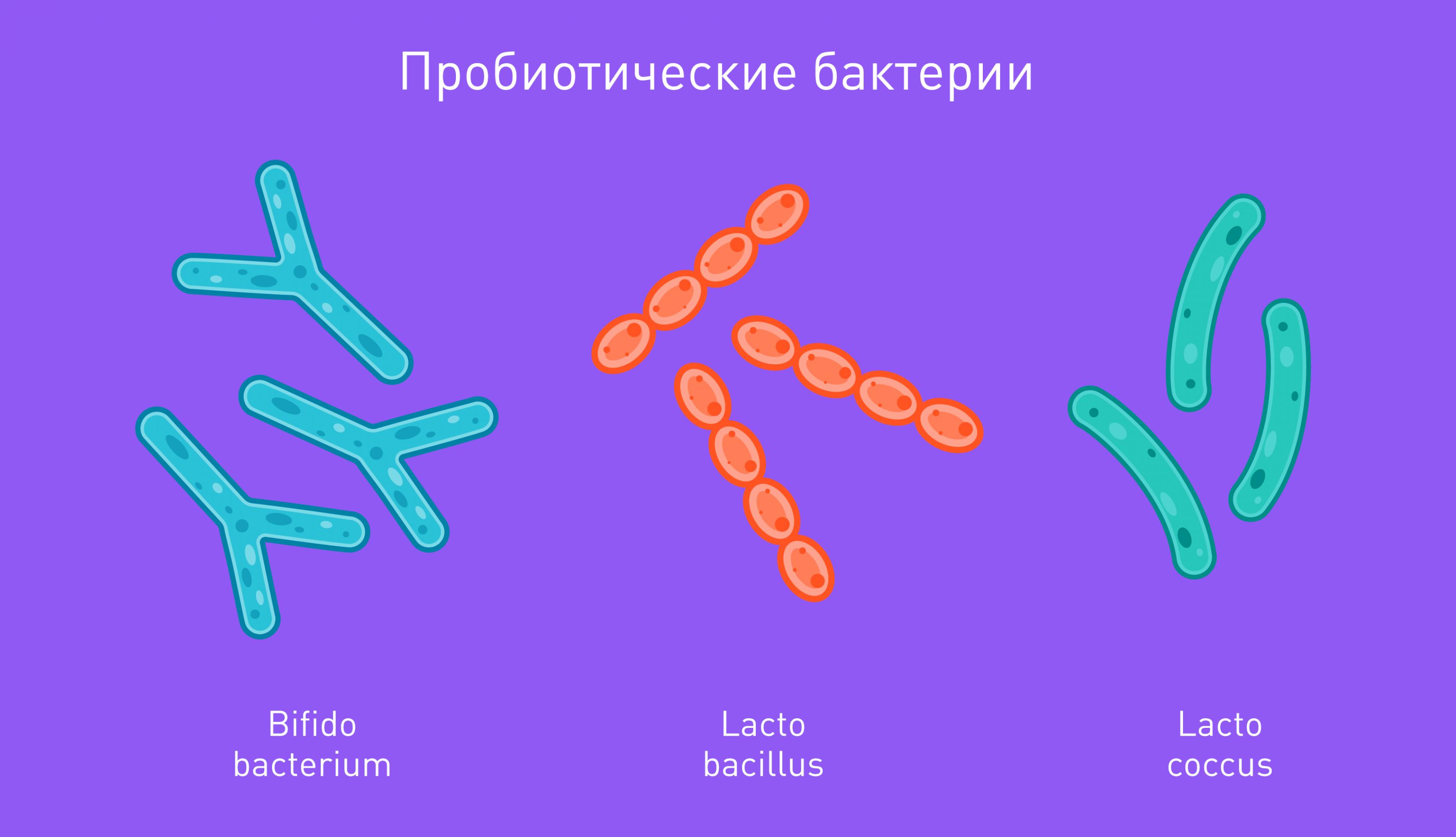 Как антибиотики влияют на организм