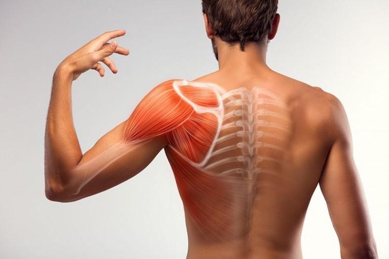 Симптомы плечелопаточного периартрита