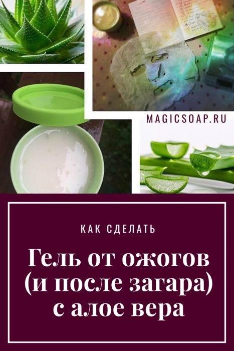 Алоэ для лица – рецепты масок в домашних условиях, применение и польза