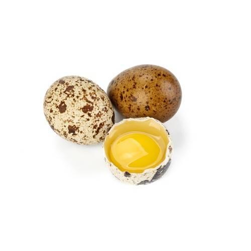 Перепелиные яйца: 26 полезных и 4 вредных свойства