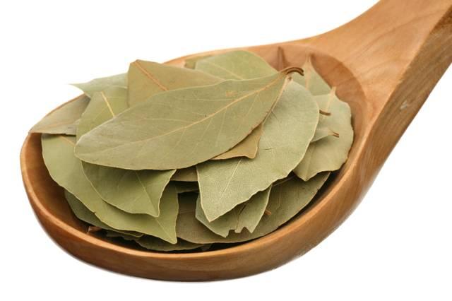 Лосьоны и маски из лаврового листа – рецепты для любого типа кожи