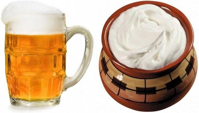 Как влияет алкоголь на потенцию мужчины: можно ли пить и сколько