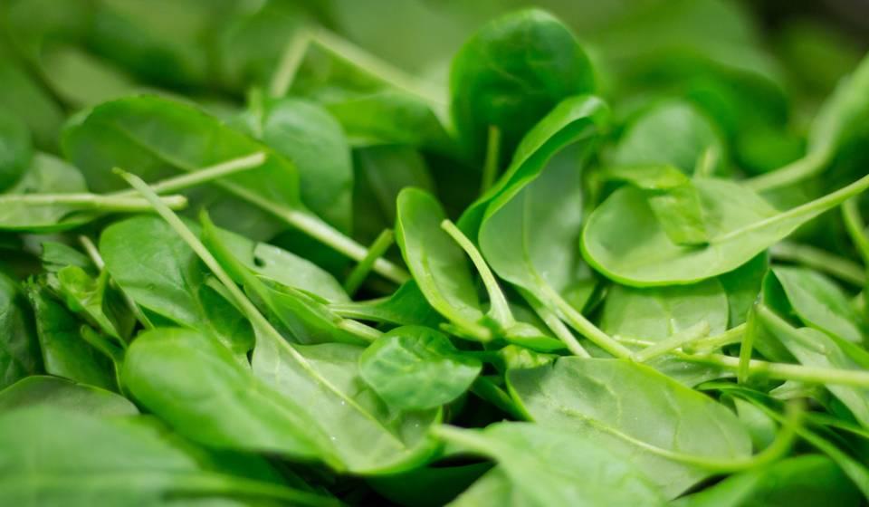 «зеленый лекарь» навашем столе: ценные свойства икачества шпината, спектр его применения, польза ивред