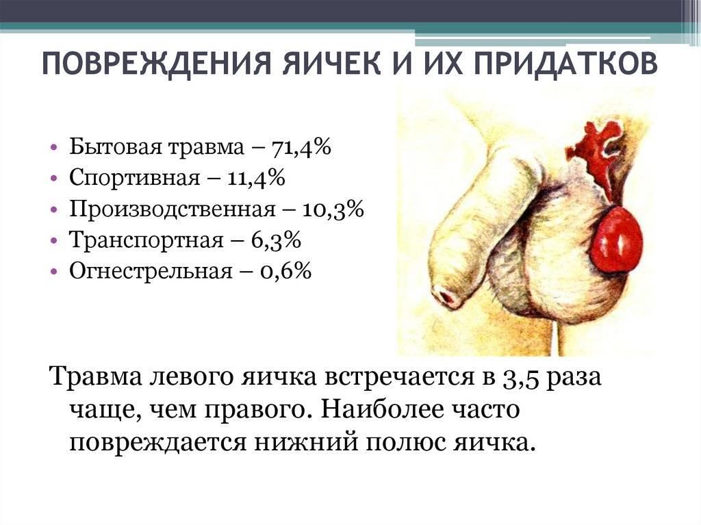 Травмы мужских половых органов. андрология (мужскиеболезни)    разрыв связок полового члена