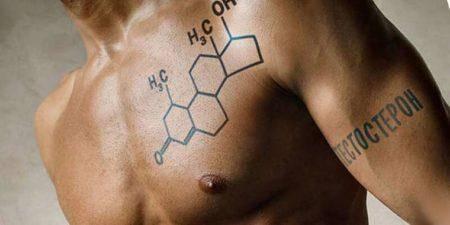 Повышается или снижается уровень тестостерона при занятии спортом