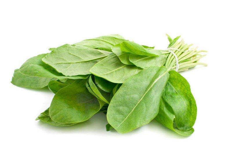 Польза и возможный вред шпината для организма