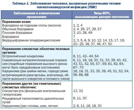 Количественный анализ впч: расшифровка результатов и значения положительных показателей