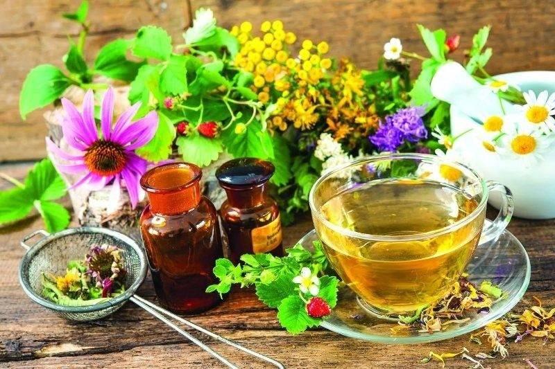 Как приготовить и принимать монастырский чай – инструкция по применению