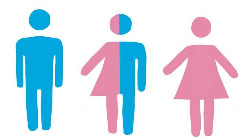 ПЦР на половые инфекции: что сдавать и как не переплатить?