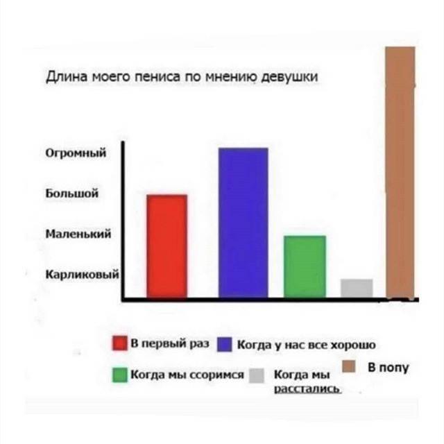 Нормальный размер члена: длина и диаметр