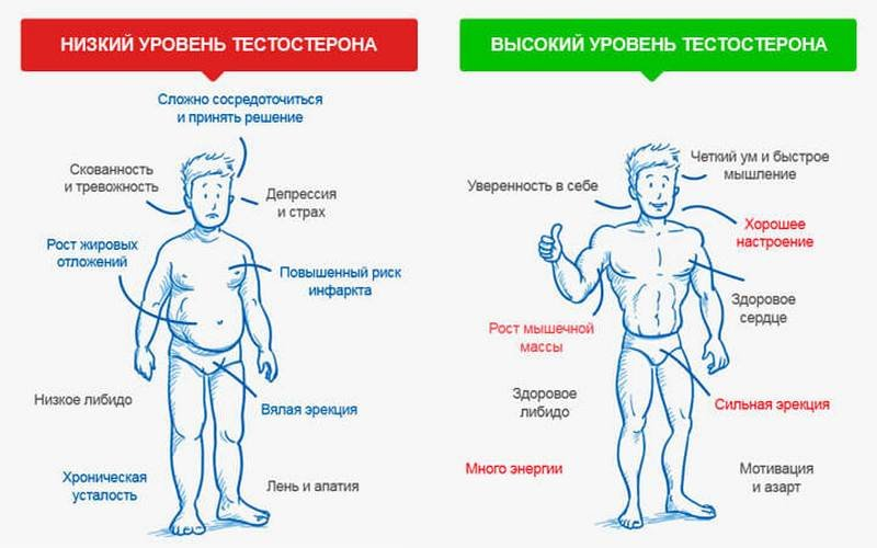 Почему возникает и как лечится гормональный сбой у мужчин
