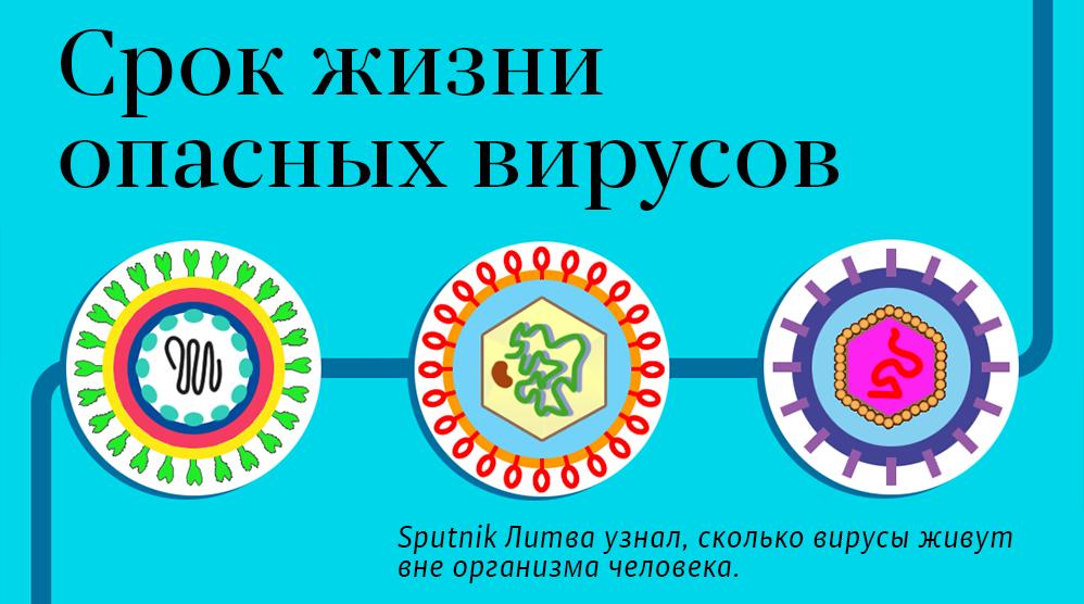 Сколько живет коронавирус во внешней среде без носителя