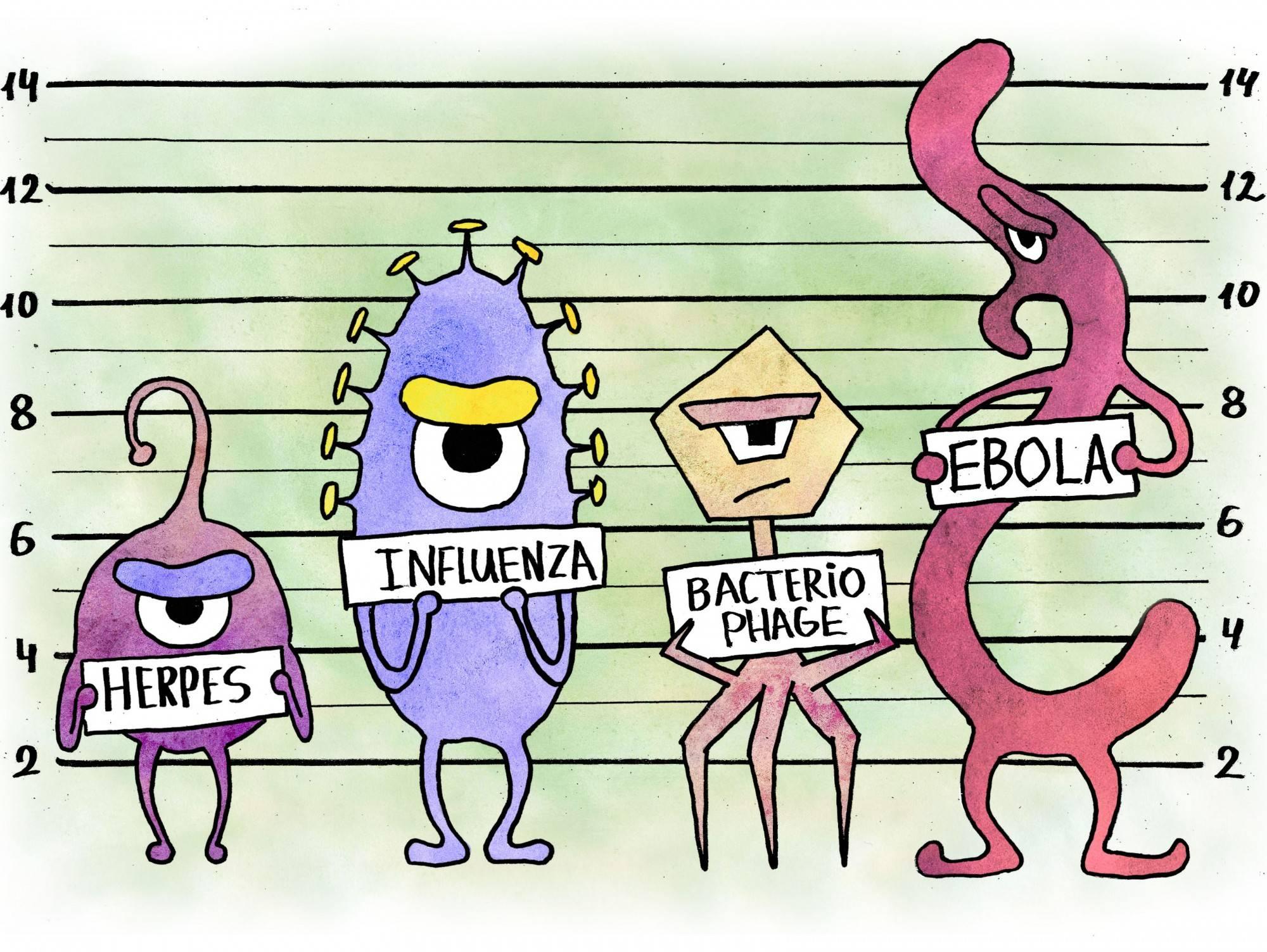 Сколько времени живет вирус спид вне организма