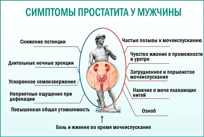 Воспаление простаты (простатит) у мужчин