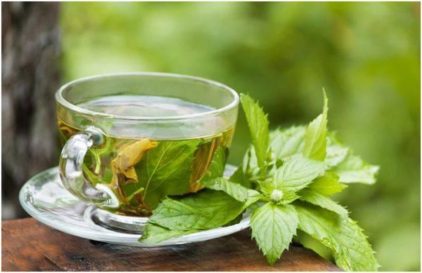 Чай для потенции: польза и вред