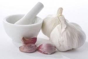 Эффективность и правила применения чеснока против папиллом: советы и рецепты