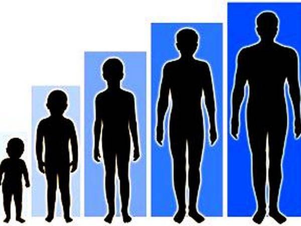 У вас растет сын: нормы полового развития мальчиков