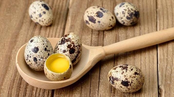Перепелиные яйца: польза и вред, калорийность, как принимать