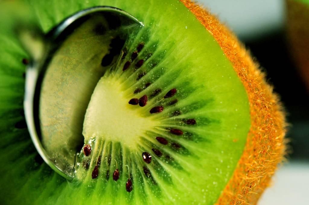 Киви фрукт — польза и вред для организма человека и его здоровья