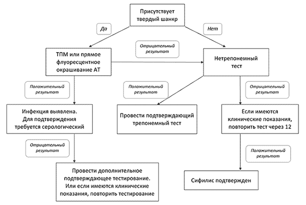 Treponema pallidum, антитела