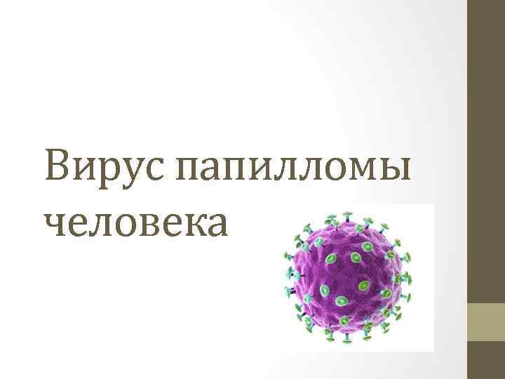 ЗдоровьеЧто нужно знать о ВПЧ и почему тест на него стоит сделать каждому