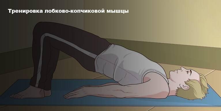Физические упражнения для потенции у мужчин